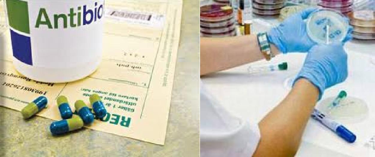 Báo cáo sử dụng kháng sinh và kháng kháng sinh tại 15 bệnh viện năm 2008-2009