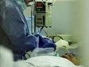 Dịch cúm A/H5N1 nguy hiểm đã quay trở lại